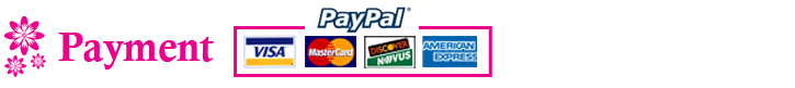 Payment paypal visa american express